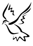 Pingeon, pomba Imagens de Stock Royalty Free
