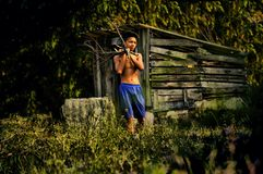 Pinggiran d'orang-outan Photos stock