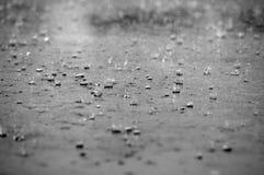 Pingos de chuva Fotos de Stock Royalty Free