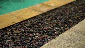 Pingos de chuva do close up que caem no assoalho de pedra no lado da piscina aberta, ver?o video estoque