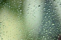 pingos de chuva em indicadores Imagem de Stock Royalty Free