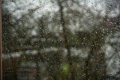 Pingos de chuva em um indicador Fotos de Stock Royalty Free