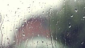 Pingos de chuva em um windowpane vídeos de arquivo