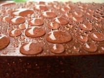 Pingos de chuva na plataforma 4 Imagens de Stock Royalty Free