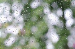 Pingos de chuva no vidro e no Bokeh do fundo verde da árvore Imagem de Stock Royalty Free