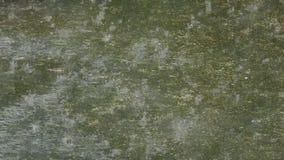 Pingos de chuva que caem no cimento video estoque