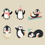 pingouin Photo stock