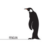pingouin Images stock