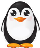 Pingouin de chéri Photographie stock