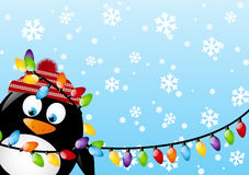 Pingouin drôle Photos libres de droits
