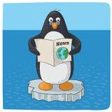 Pingouin luttant avec le changement climatique Images libres de droits