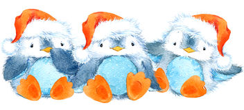 Pingouin pelucheux mignon d'oiseau Pingouin drôle d'aquarelle Images libres de droits