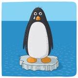 Pingouin pleurant pour le changement climatique Photographie stock