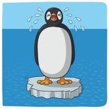 Pingouin pleurant pour le changement climatique Images libres de droits