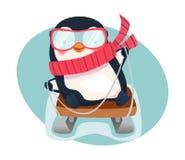 Pingouin sur le traîneau illustration libre de droits