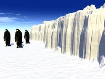 Pingouins 2 Photos libres de droits