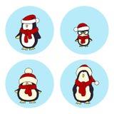 pingouins Photo stock