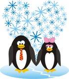 Pingouins amoureux Photos libres de droits