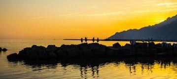 Pingouins au coucher du soleil Photo stock