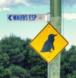 Pingouins croisant le signe photos libres de droits