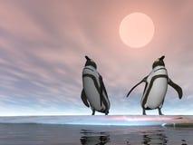 Pingouins deux Images stock