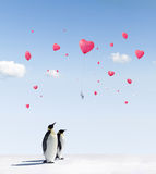Pingouins et ballons Photographie stock