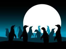 Pingouins et lune Images libres de droits