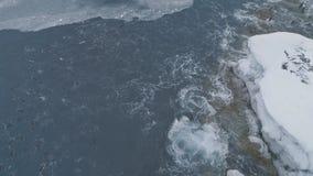 Pingouins sous-marins dans l'océan Tir de l'Antarctique banque de vidéos
