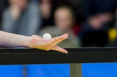 Pingpongspeler het dienen, sluit omhoog Individuele sport stock foto