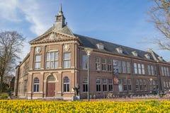 Pingstliljan blommar framme av museet i Veendam Arkivbild