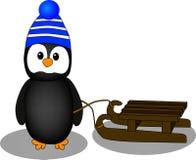 Pinguïn, Stock Afbeelding