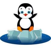 Pinguïn op Ijs Royalty-vrije Stock Foto