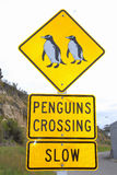 Pinguïnen die verkeersteken, Oamaru, Nieuw Zeeland kruisen Stock Fotografie