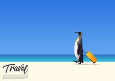 Pinguim bonito que anda e que guarda a praia branca da areia da caixa da cabine quando em férias de verão Cartaz do feriado da pr Fotografia de Stock Royalty Free