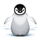 Pinguim de imperador pequeno do bebê Fotos de Stock