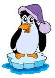Pinguim na ilustração do vetor do iceberg Imagens de Stock Royalty Free