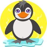 Pinguim no gelo de flutuação Fotografia de Stock