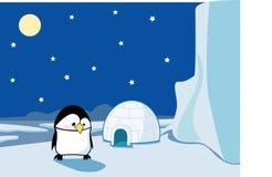 Pinguim no icefield Fotografia de Stock Royalty Free