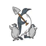 Pinguim que guarda a pá com tiragem dos pintainhos Imagens de Stock