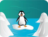 Pinguin Fotografia de Stock Royalty Free