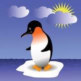 Pinguin Stockbilder