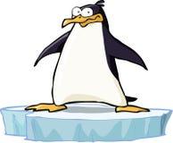 Pinguin auf der Eisscholle Lizenzfreie Stockfotografie