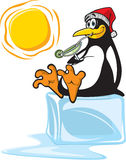 Pinguin auf Eis Lizenzfreie Stockfotos