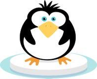 Pinguin auf Eis Stockbild