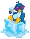 Pinguin auf Eis Stockbilder