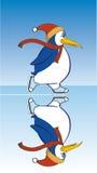 Pinguin, der auf Eis eisläuft Stockfoto