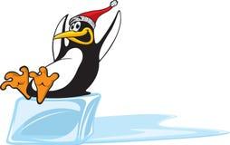 Pinguin, der auf Eis schiebt Stockfoto
