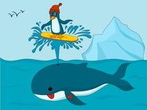 Pinguin im Hut, der auf die Tülle des Wals surft lizenzfreie abbildung
