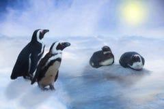 Pinguin im Schnee und das Eis, blauer Himmel und Sonne, gezeichneter Effekt Lizenzfreies Stockfoto
