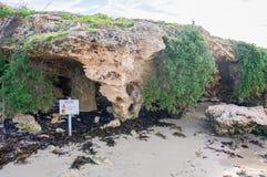 Pinguin-Insel-Kalkstein-Höhlen Lizenzfreie Stockfotos